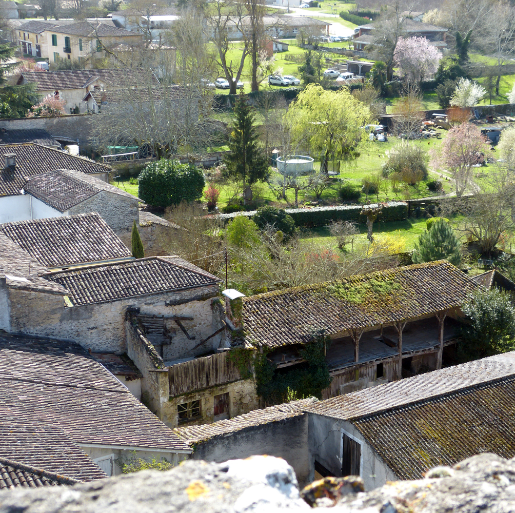 Villandraut from the castle